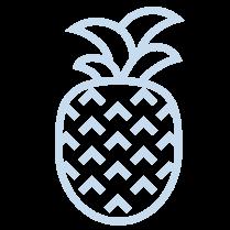 afbeelding-pineapple